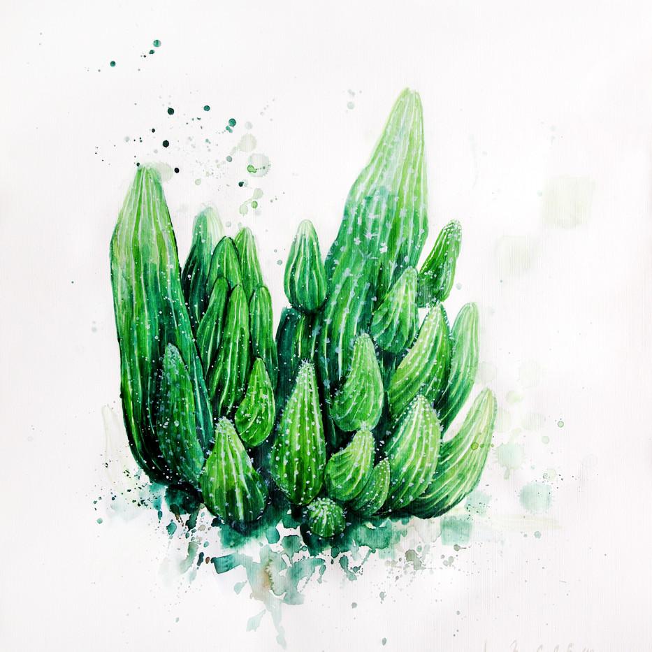 Cactus, Watercolor on paper, 2019, 40cm x 45cm