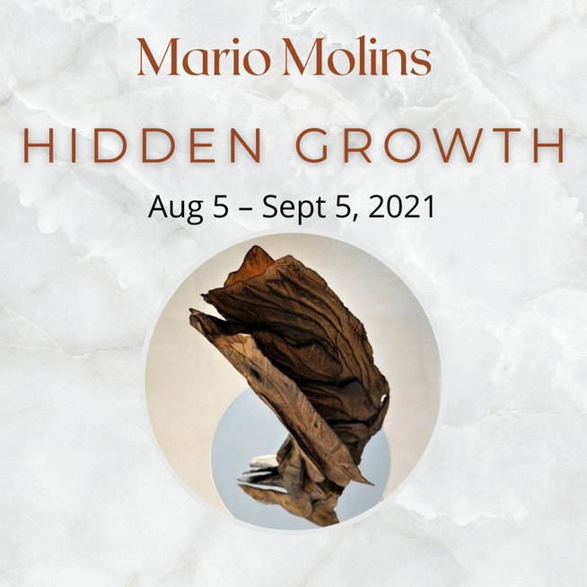 Mario Molins (1).jpg