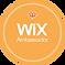 Wix Uruguay Diseño web