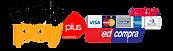 logo-webpay-plus-1.png