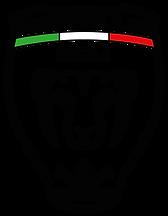 SANTILLO CICLI-01.png