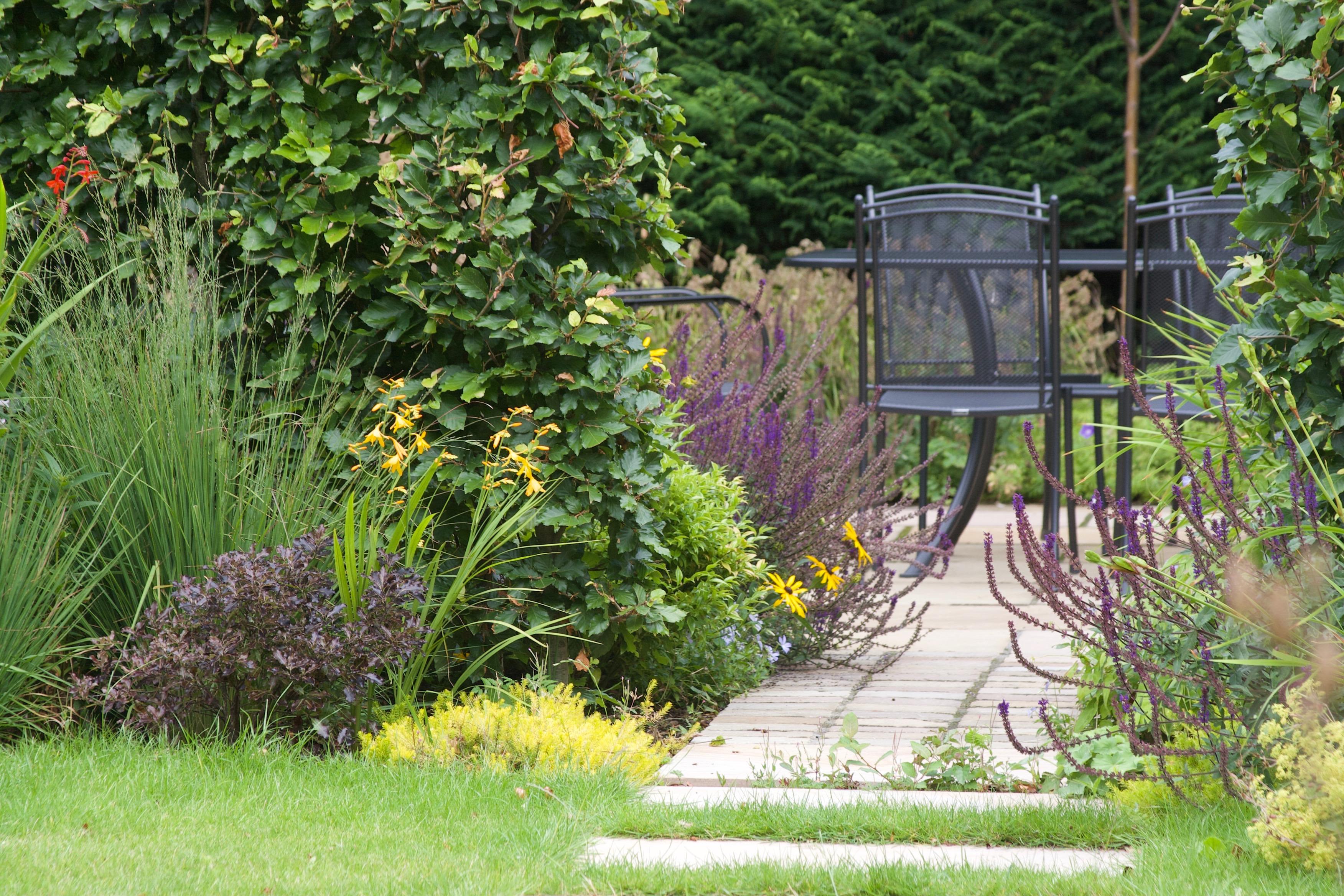 Informal Family Garden Edinburgh