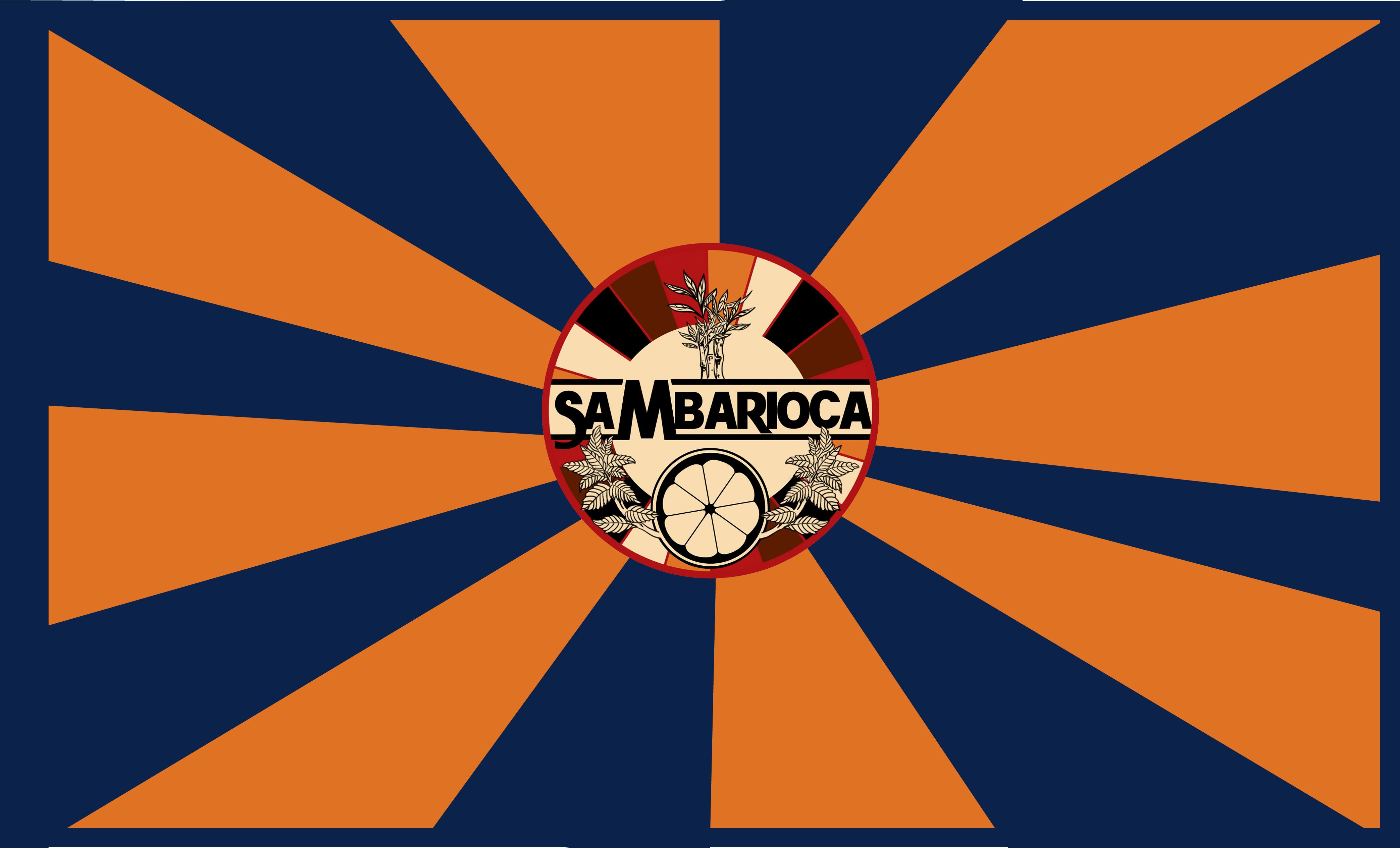 DRAPEAU SAMBARIOCA 2018 2019 copie