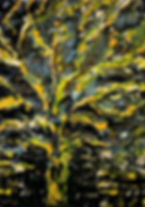 Nikon%2520The%2520sun%2520tree%252026-30%2520cm%2520(4)_edited_edited.jpg