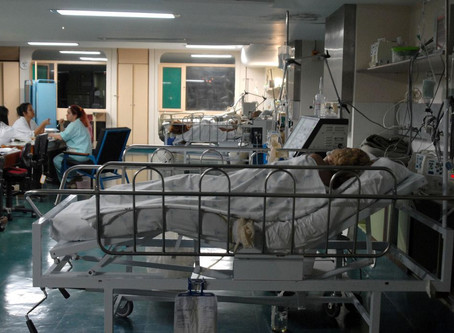 Covid-19 no Rio: alta de casos e menos leitos de UTI