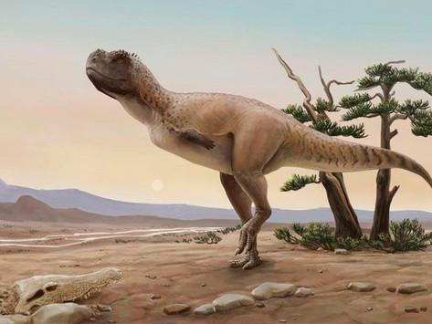 Espécie de dinossauro carnívoro é descoberta em SP