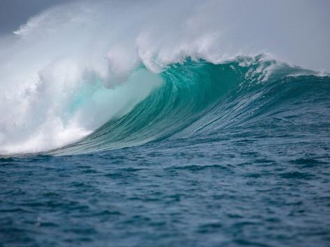 Niterói realiza o primeiro Fórum da Década dos Oceanos