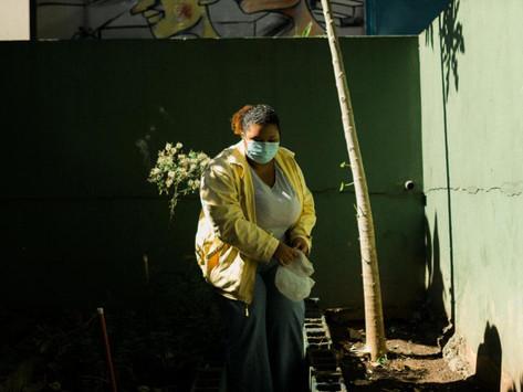 Internet e educação conectam sonhos nas periferias brasileiras