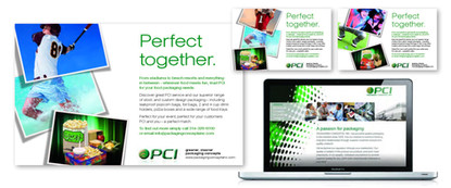 Web Design & Hosting - PCI