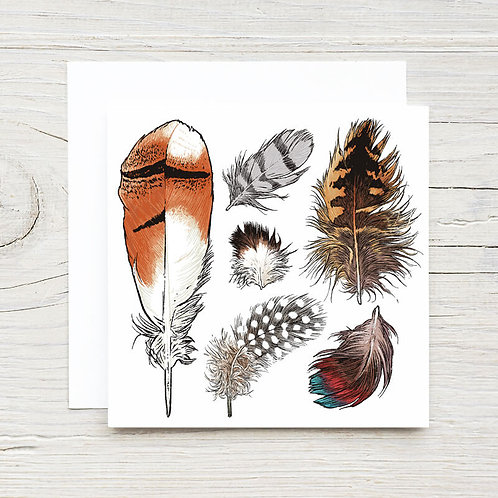 Feathers Gift Card Set (10)