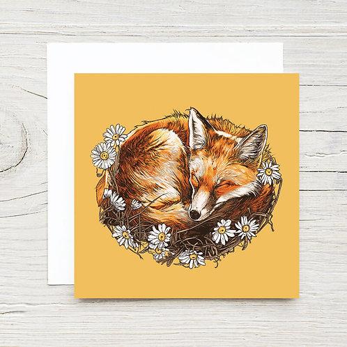 Sleeping Fox Gift Card Set (10)