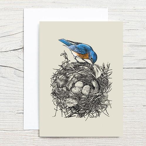 Bluebird's Nest 5x7 Notecard Set (8)
