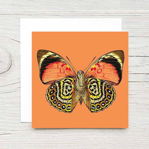 Butterfly Gift Card Set (10)