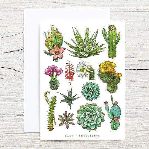 Cacti Beauties 5x7 Notecard Set (8)