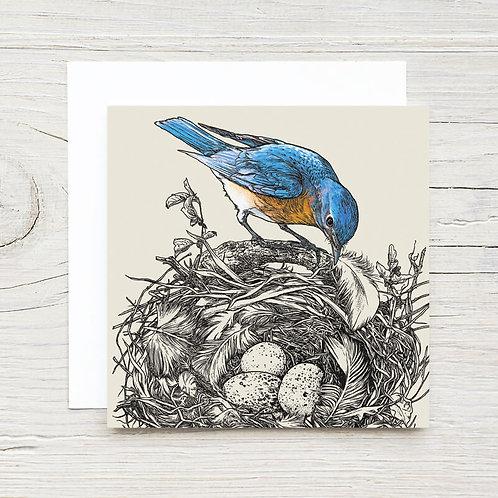 Bluebird Gift Card Set (10)