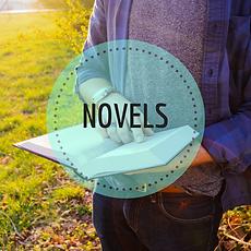 Link to Novels
