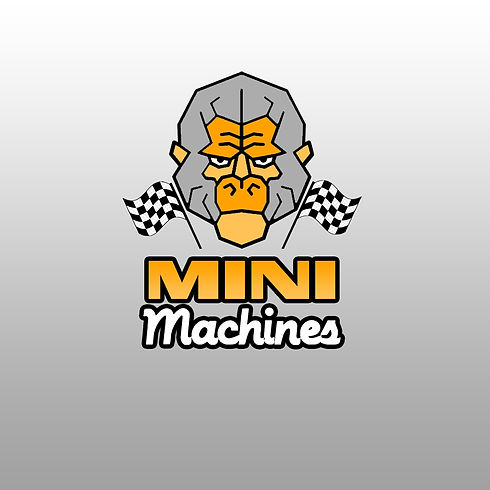Mini3.jpg