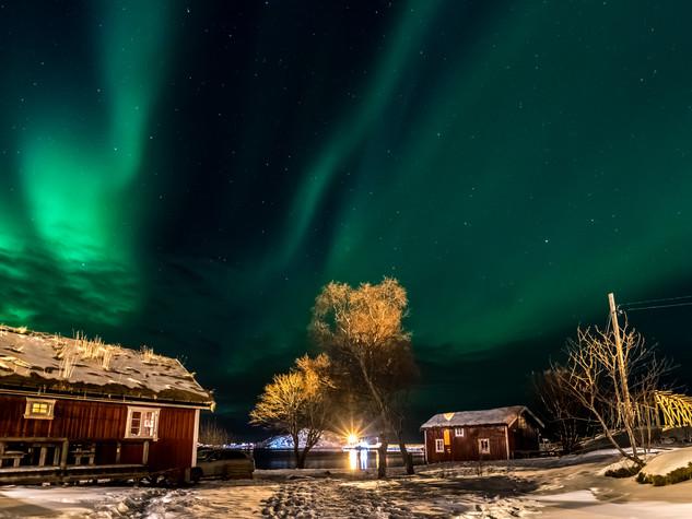 3975_2018_Norwegen.jpg