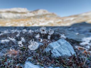 4034_2018_Lämmerenhütte.jpg
