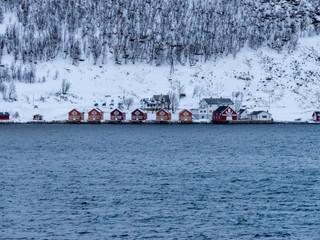 2875_2017_Tromsø.jpg