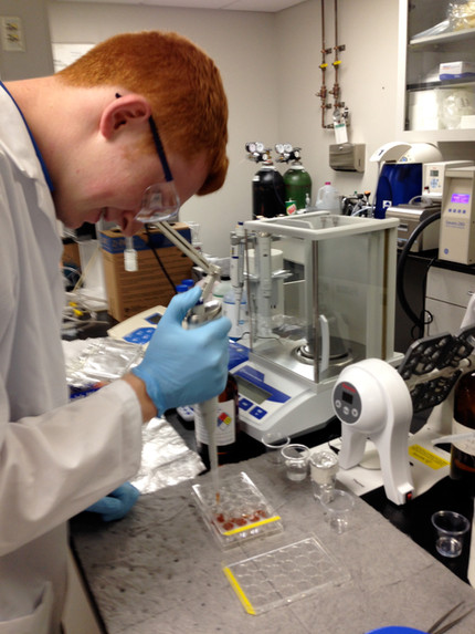Andrew conducts his 1st ELISA!