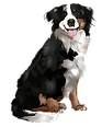 dogs-vector-animal-16-transparent.png