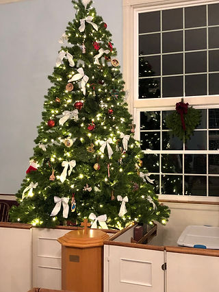 Tree 2018.JPG