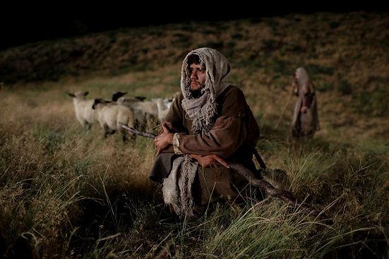 shepherds.jpeg