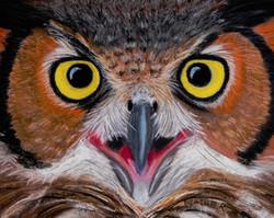 Halloween Owl pastel