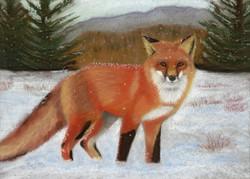 Fox in Winter Pastel 20x28