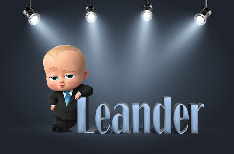 Geboortekaartje Leander