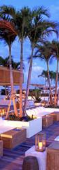 large_Rooftop Bar & Lounge 2.jpg