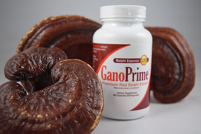 Nothing compares to GanoPrime Reishi in the market with 100% extracted reishi without fillers or by-products