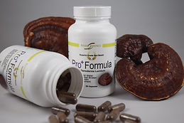 Pro Formula Reishi using real matured fully grown red Reishi