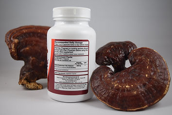 No fillers and no by-products in each capsule, GanoPrime reishi is one of a kind honest Reishi product in the market