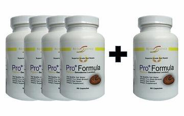 Pro Formula Reishi 5 special offer