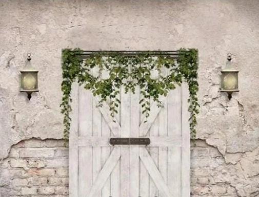 Barn Door3