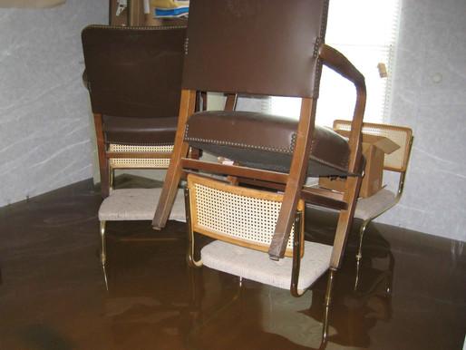 Statement zur Hochwasserkatastrophe