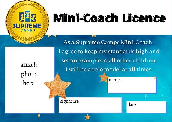 mini coach scheme.png