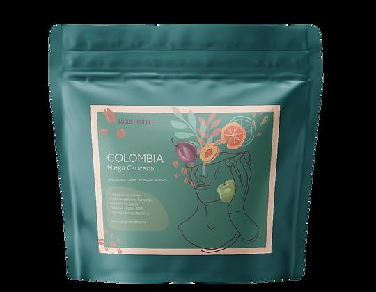 Colombia Minga Caucana