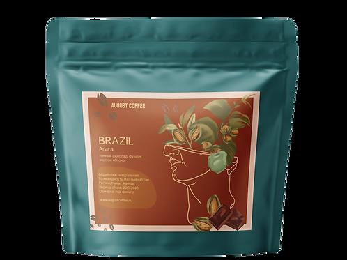 Brazil Arara