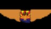 APA_Logo_New.png