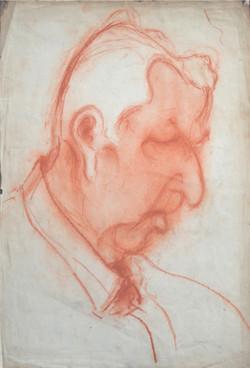 Portrait profil