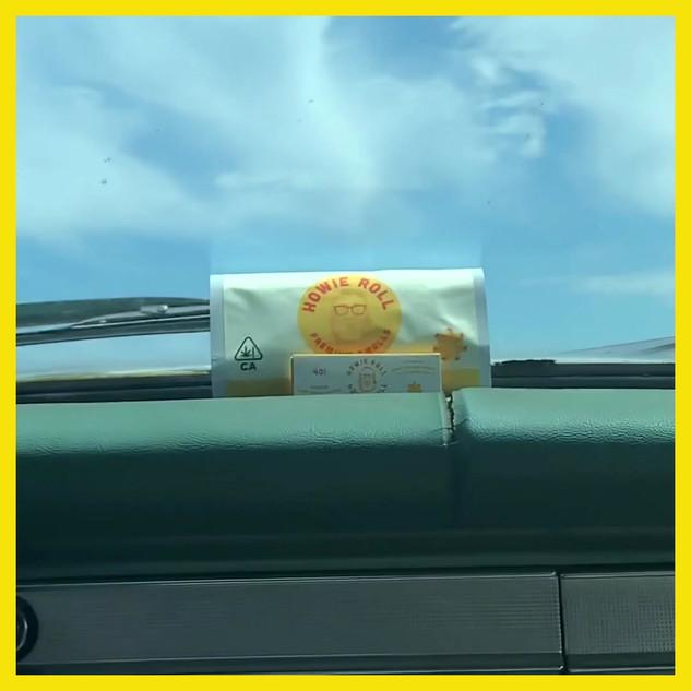 SRF-Howie-Cabbie-02-1080.mov