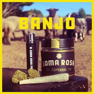 SRF-Especial-Banjo-04-1080.mov