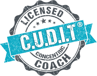 CUDIT Logo PNG For Shirts Etc.png