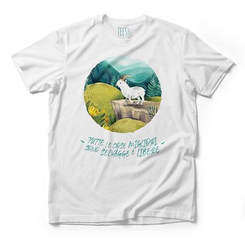 T- Shirt, Tutte le cose migliori