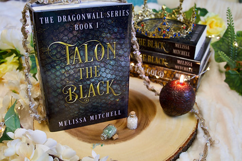 Talon the Black - Hardcover