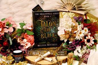 Hardcover Talon the Black