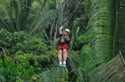 belize-zip-line-canopy.jpg